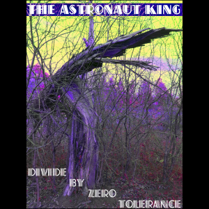 The Astronaut King - Divide By Zero Tolerance